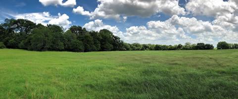 Texas Land & Homes Company - Robertson County, Texas